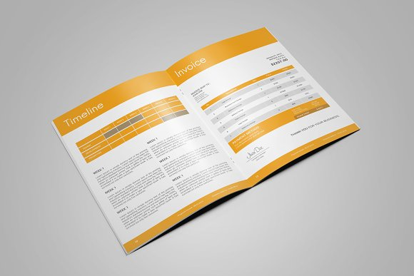 Professional Web Proposal Template in Stationery Templates - product preview 6