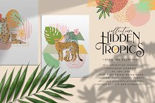 Hidden Tropics collection by  in Illustrations