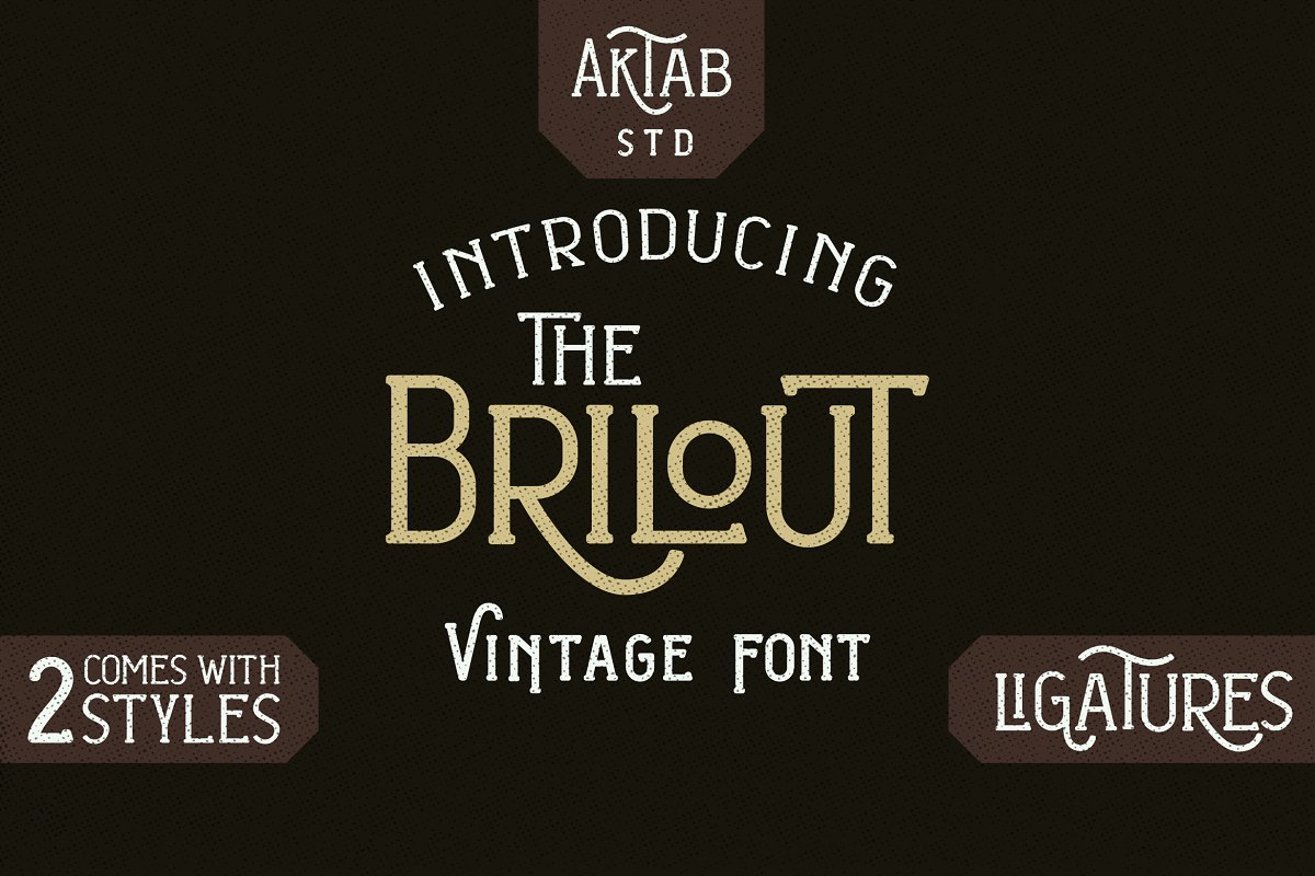 Brilout Display Font in Display Fonts - product preview 8
