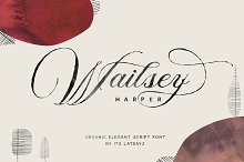 Miss Wailsey | Organic Calligraphy by  in Script Fonts