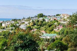 Bluff Hill Napier New Zealand