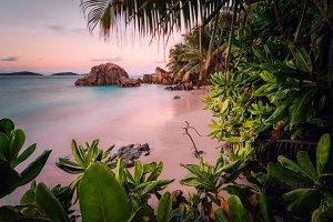 Paradise exotic beach on La Digue