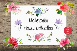 Watercolor flower set, hand-painted