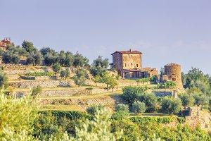 montalcino-1127.jpg
