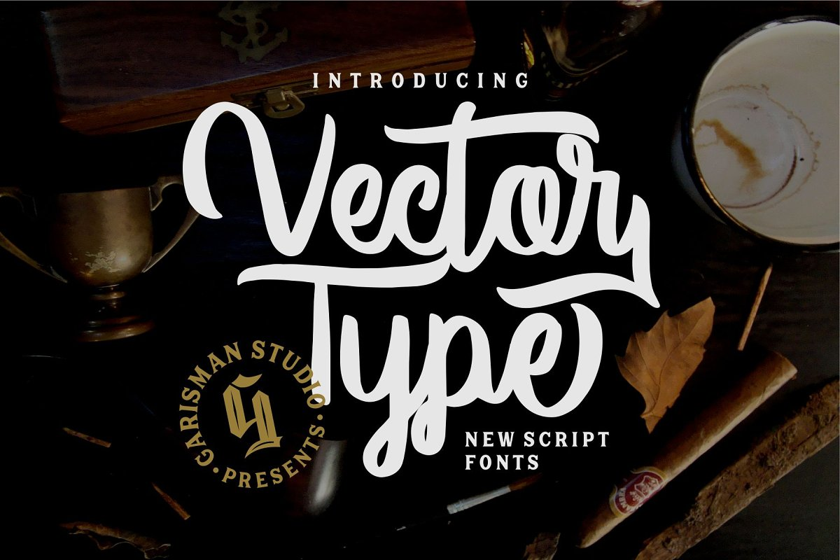 Vector Type in Script Fonts - product preview 8