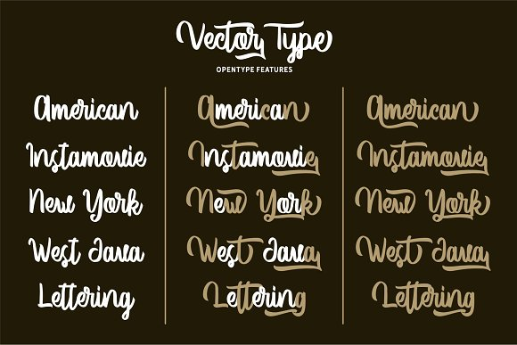 Vector Type in Script Fonts - product preview 2
