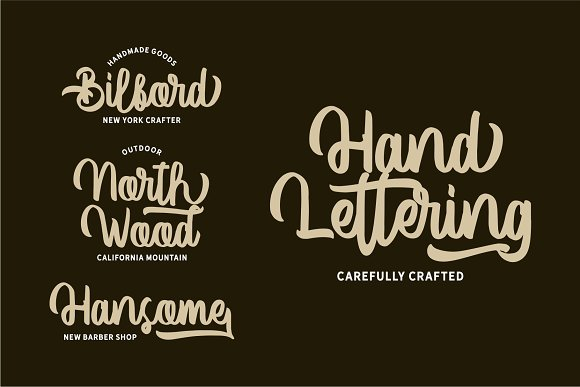 Vector Type in Script Fonts - product preview 4