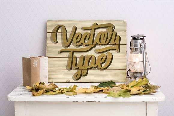 Vector Type in Script Fonts - product preview 5