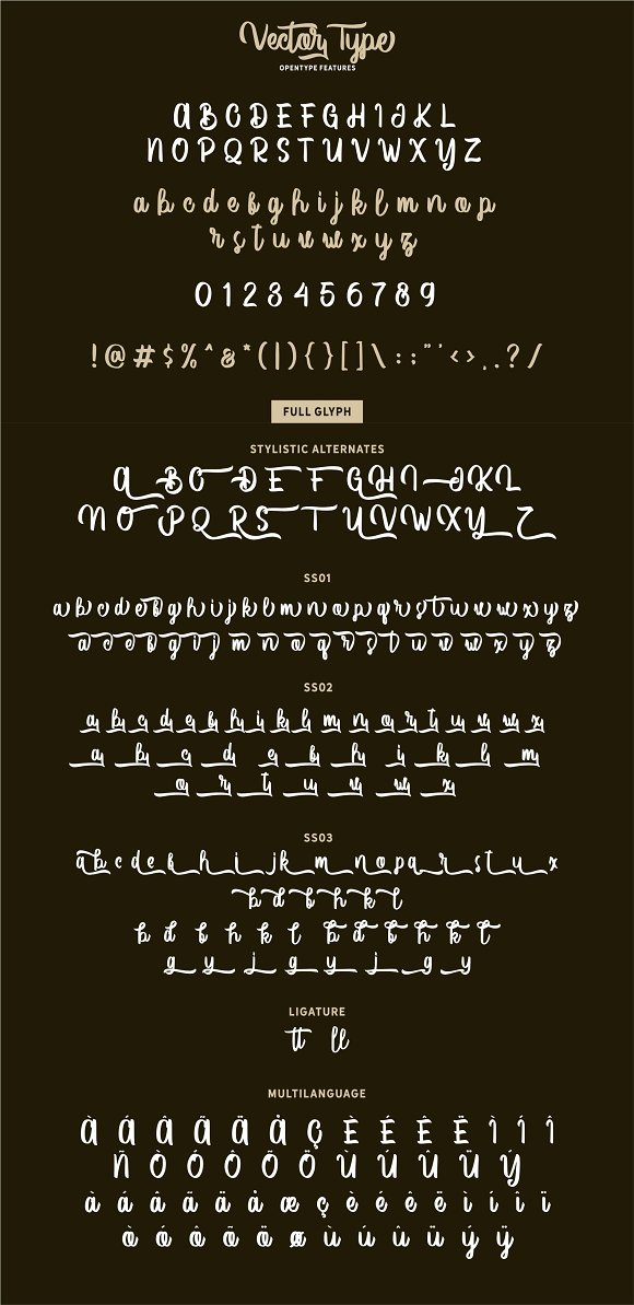 Vector Type in Script Fonts - product preview 7