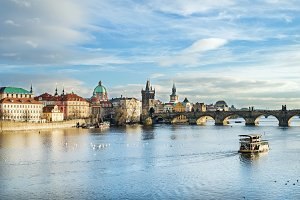 Charles bridge and white swans