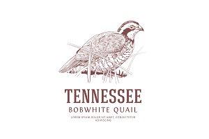 USA Birds Logos: Bobwhite Quail