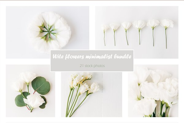 Templates: Viktoriya's Photos - White flowers minimalist bundle