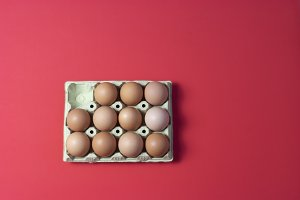 Raw eggs on red background