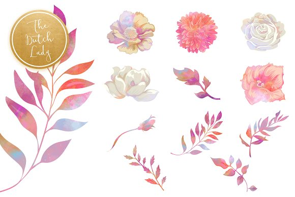 Floral & Botanical Clipart - Melanie in Illustrations - product preview 3