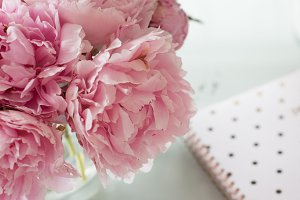 Peonies & Polka Dots | Stock Photos