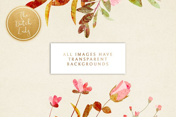 Floral & Botanical Clipart - Amanda in Illustrations - product preview 1