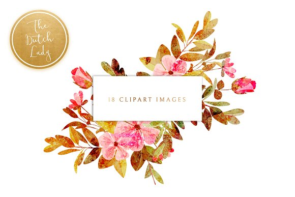 Floral & Botanical Clipart - Amanda in Illustrations - product preview 2