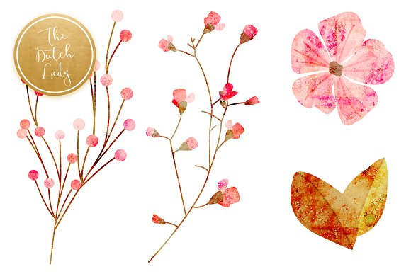 Floral & Botanical Clipart - Amanda in Illustrations - product preview 3