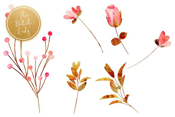 Floral & Botanical Clipart - Amanda in Illustrations - product preview 4