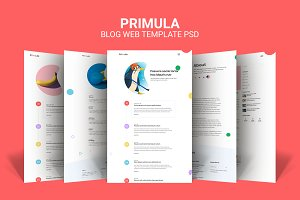 Primula - Modern Web Template PSD