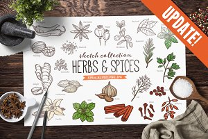 UPDATE! Herbs And Spices Sketches