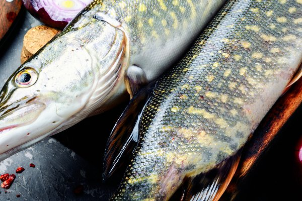 Food Images - Fish pike on the kitchen board