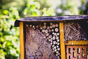 handcraft insect hotel
