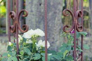 Handcraft rose grid
