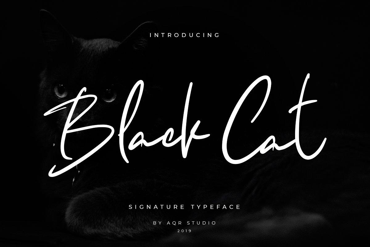 Black Cats Siganture Font in Script Fonts - product preview 8