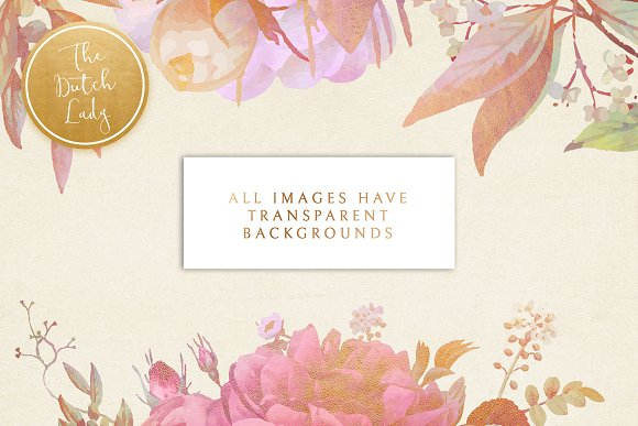 Floral & Botanical Clipart - Olivia in Illustrations - product preview 1