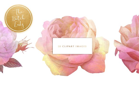 Floral & Botanical Clipart - Olivia in Illustrations - product preview 2