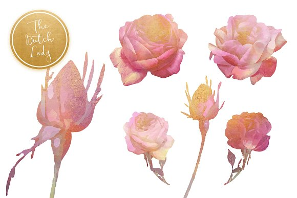 Floral & Botanical Clipart - Olivia in Illustrations - product preview 3