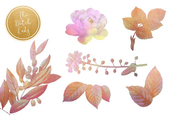 Floral & Botanical Clipart - Olivia in Illustrations - product preview 4