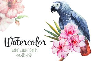 Watercolor set of parrots and flower