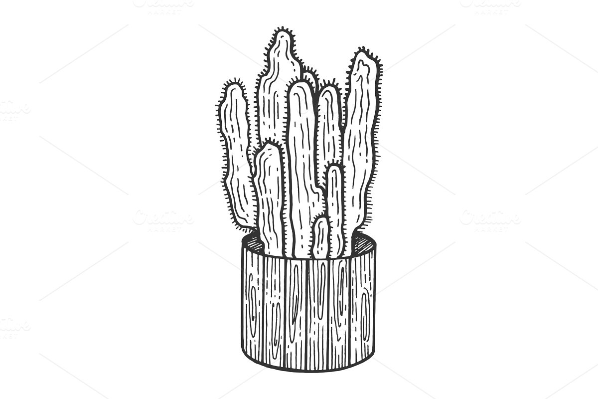 Save cactus flower pot sketch engraving