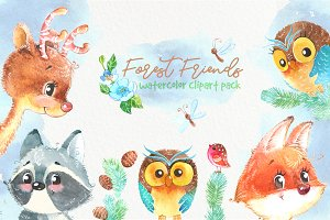 Woodland forest watercolor animals