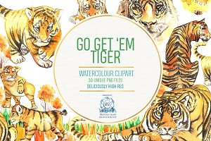 REALISTIC TIGER WATERCOLOUR CLIPART