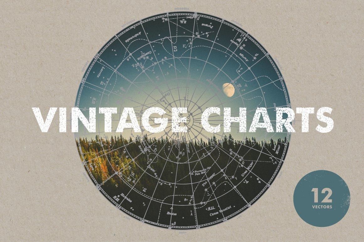 Chart Photos Graphics Fonts Themes Templates Creative Market