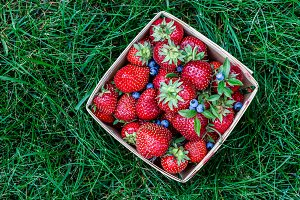 Strawberry and blueberry in basket