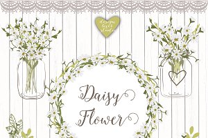 Vector daisy flowers cliparts