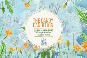61 DANDELION WATERCOLOR BUNDLE