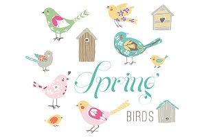 Spring Birds EPS