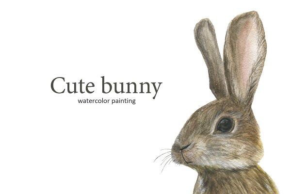 Cute watercolor bunny