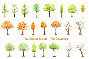 Watercolor Tree Collection