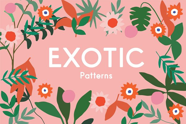 Graphic Patterns: Emma Make - Exotic Vector Patterns