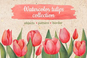 Watercolor tulips collection