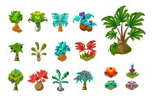 Tropical trees and plants