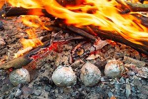 Potatoes roasting in a bonfire