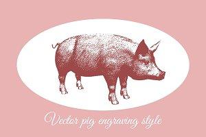 Engraving pig