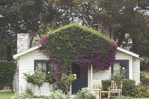 Vintage Homestead in Carmel III